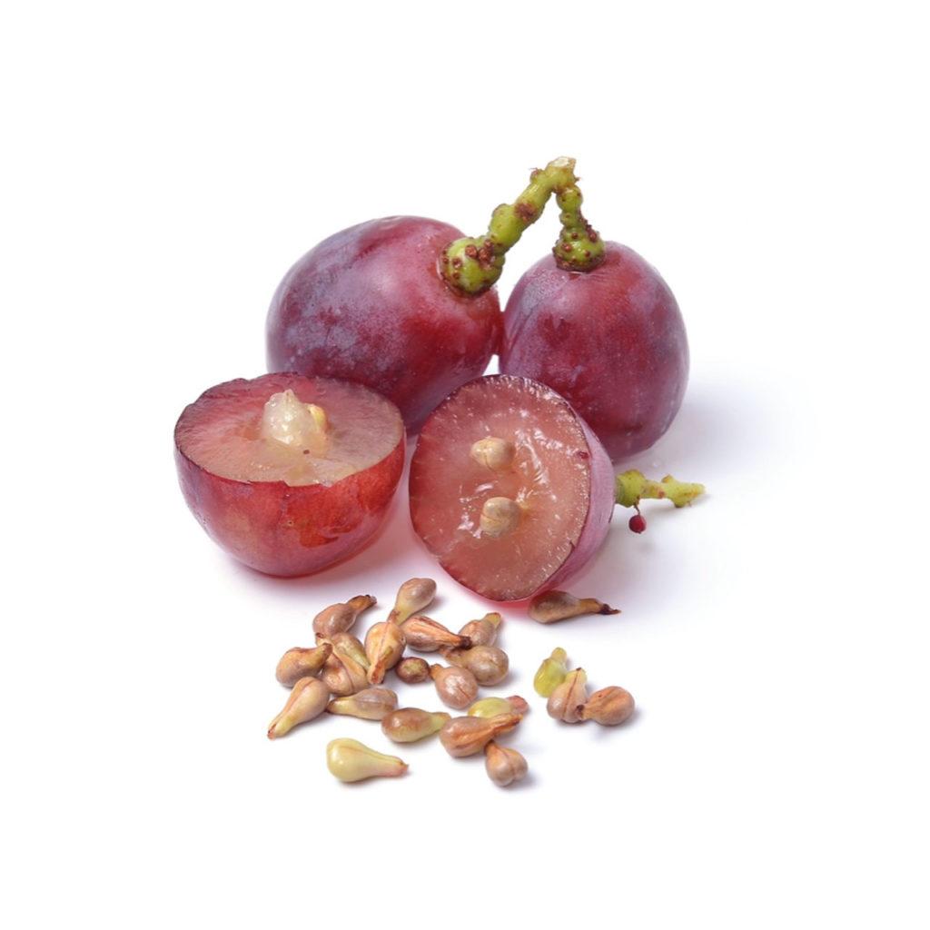 olio di semi di vite rossa